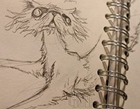 Peter and the Wolf Sketchwork