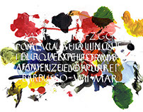 Callygraphy mix