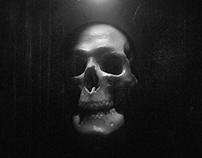 Skull Installation