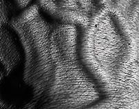 Hand's Portraits