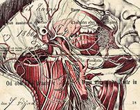 'glass hearts display silver tongues' Bic biro drawing
