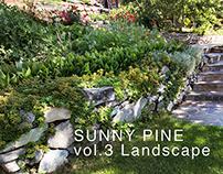 Sunny Pine. vol.3 Landscape
