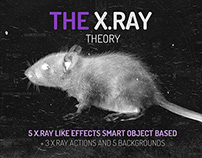 The X.RAY Theory