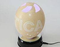 Eggvetica
