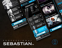Responsive Design for Sebastian Professional