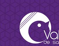 Redesign - Logotipo Vale de Saron - Comunidade Católica