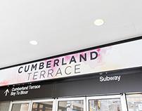 Cumberland Terrace Revitalization: Installation