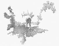 Elk Stippling Project