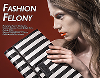 Fashion Felony