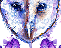 Owl and Irises
