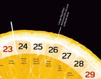 Cido calendar 2011