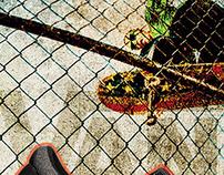 Vans Sneaker Poster