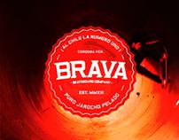 BRAVA SKATEBOARD CO. NEW LOGO !!