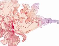 Flowers Surgery鲜花手术 | Book书籍设计