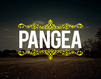 Pangea Paradise | Youtube Channel