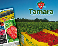 Tamara frutillas