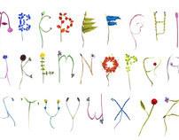 Flower Alpabet
