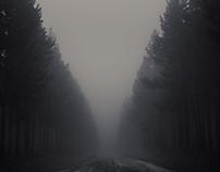 ROAD TO BAVIAANSKLOOF
