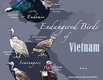 Endangered Birds of Vietnam