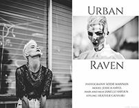 Urban Raven