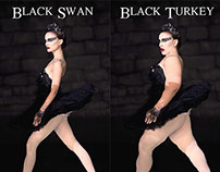 Black Swan / Black Turkey