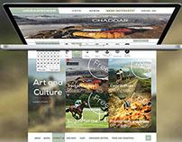 Travel website UI