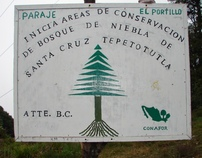 Community Conservation in Mexico