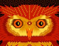 geometric owl 2011