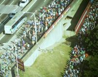Rio - Niterói Bridge Marathon