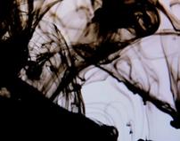 Taro Horiuchi 2011S/S : Concept Video