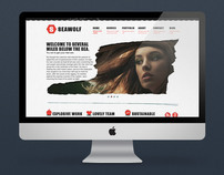 Seawolf - website concept