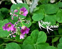 Ramo-Ramo Collection