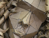 Figures in Cardboard