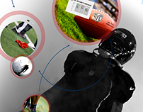 NFL Security Prezi Presentation Design