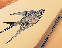 ILLUSTRATION | SWALLOW