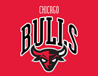 CHICAGO BULLS NEW BRAND 2017