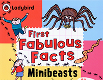 MINIBEASTS  Ladybird First Fabulous Facts
