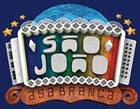 LOGO SÃO JOÃO TV ASA BRANCA 2014