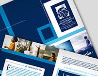 Branding - Instituto Logoterapia