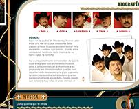 Diseño web - Grupo PESADO