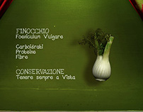 FOX /7 Kitchen Tricks / Finocchio