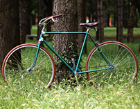 mr Green Bike