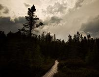 La Tourbière de Johnville / Johnville's Bog