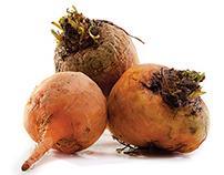 Fresh Organic Produce (Part 2)