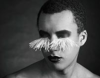 ostrich eyelashes [ˈɔ:strɪtʃ ˈaɪˌlæʃəz]