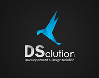 DSolution
