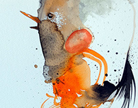 watercolors 2014 - bird series