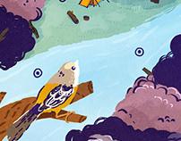 Tierra de Todos - Ilustraciones