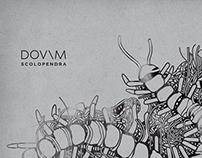 DOVIM / Scolopendra