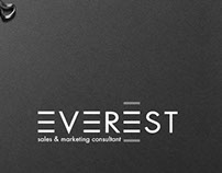 EVEREST. sales & marketing consultant. LOGO